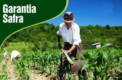 Santa Filomena: Calendário de entrega de boletos Garantia Safra 2020/2021