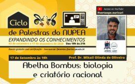 """Núcleo de Pesquisa e Extensão em Abelhas do campus Ouricuri do IF Sertão – PE promove palestra """"Abelha Bombus: biologia e criatório racional"""" nesta quinta-feira (17)"""