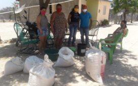 Projeto Agrobiodiversidade do Semiárido realiza entrega de sementes crioulas no Sertão do Araripe pernambucano