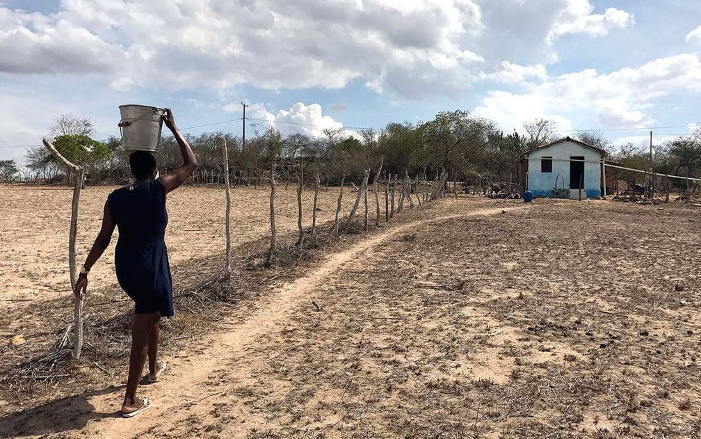 Governo aprova R$ 1,2 bi para combate à seca no…