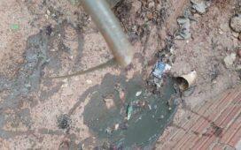 Vídeo mostra água cor de lama saindo de torneira em Santa Filomena-PE