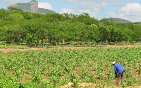 Prazo para pagamento do Garantia-Safra 2020/2021 é prorrogado para agricultores de Dormentes