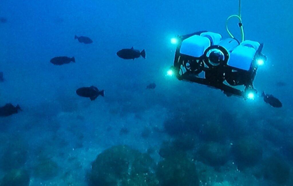 ROV foi uma das tecnologias de ponta usadas pelos pesquisadores na expedição em Fernando de Noronha.