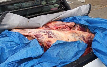 Homens são detidos com carne de cavalo e jumento para vender