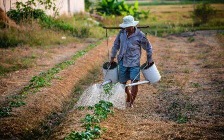 Garantia-Safra deve beneficiar mais de 197 mil agricultores familiares na…
