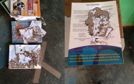 Gestor de Escola do Distrito de Livramento esclarece descarte de livros inutilizáveis