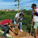Prefeito Ricardo Ramos planta árvores na entrada da cidade