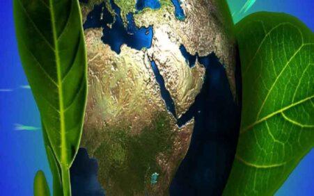 Dia do Meio Ambiente: Preservação ambiental